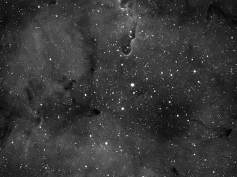 IC1396-Elephant Trunk